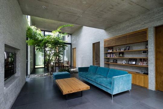 Xu hướng tạo vườn trong nhà trong thiết kế nhà ở - Ảnh 2.