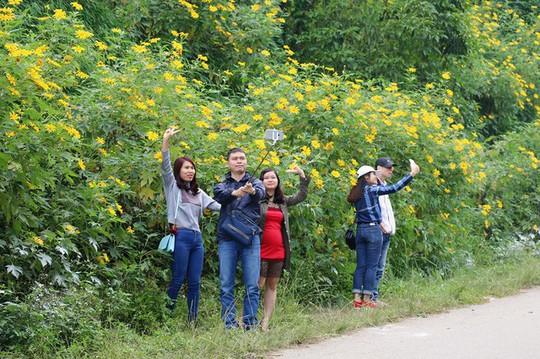 Mê mẩn những cung đường hoa dã quỳ đẹp nhất Việt Nam - Ảnh 1.