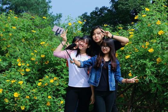 Mê mẩn những cung đường hoa dã quỳ đẹp nhất Việt Nam - Ảnh 2.
