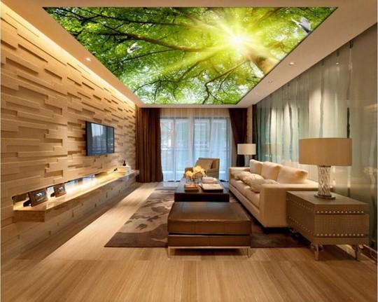 Đẹp kinh ngạc với trần nhà 3D - Ảnh 1.