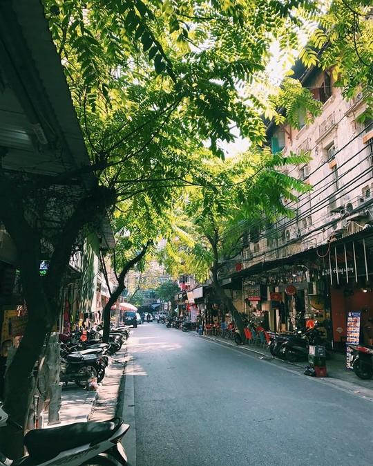 Việt Nam đẹp đến thổn thức dưới mắt nhiếp ảnh gia người Anh - Ảnh 3.