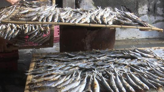 Chết thèm nhìn nướng cá bằng than ở Cửa Lò ngày rét - Ảnh 1.