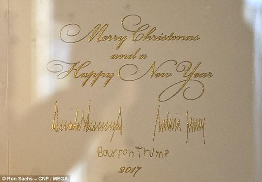 Cháu nội Tổng thống Trump vất vả trong phòng Bầu dục - Ảnh 4.