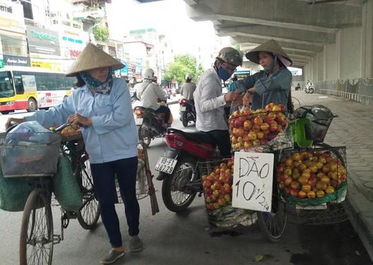 Hà Nội: 80% trái cây tại các chợ đầu mối không rõ nguồn gốc - Ảnh 1.