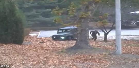 Binh sĩ Triều Tiên chạy sang Hàn Quốc, hai bên nổ súng - Ảnh 1.