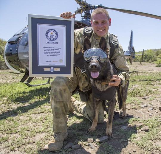 Độc đáo những chú chó anh hùng nhảy dù cứu voi - Ảnh 4.