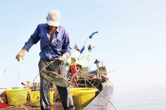 Săn ốc cà na trên biển Gò Công - Ảnh 1.
