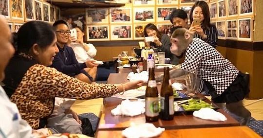 Thuê khỉ làm... bồi bàn, quán rượu ở Nhật Bản gây sốt - Ảnh 1.