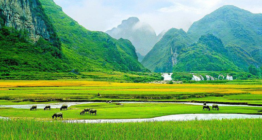 Cảnh Việt Nam xanh thẳm, đẹp như thơ - Ảnh 1.