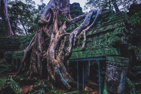 Ta Prohm - ngôi đền của những rễ cây kỳ dị - Ảnh 11.