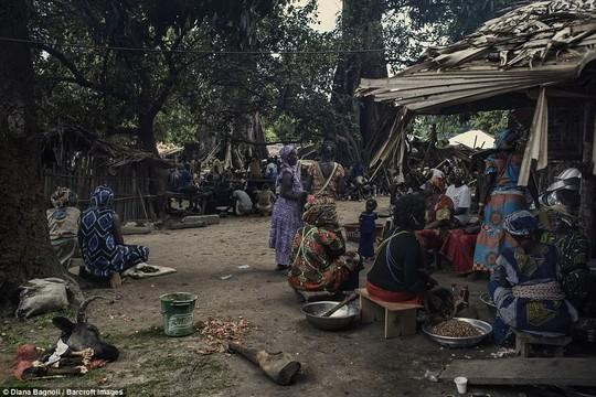 Để được kết hôn, nam thanh niên Senegal sống trong rừng một tháng - Ảnh 11.