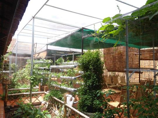 Lạ lùng quán cà phê... rau sạch ở Buôn Ma Thuột - Ảnh 7.