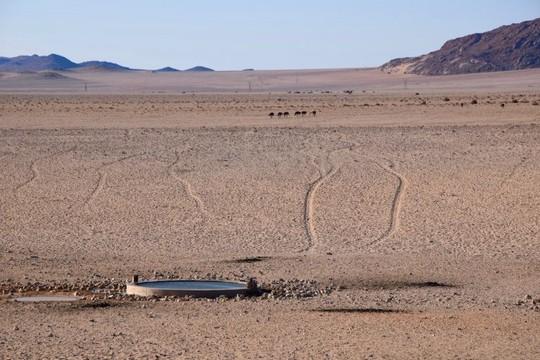 Vẻ kỳ bí của thị trấn bỏ hoang bị sa mạc nuốt chửng - Ảnh 12.