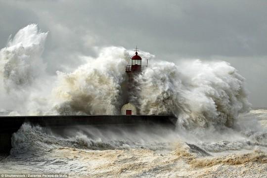 Choáng ngợp với những con sóng khổng lồ tuyệt đẹp nhưng cũng đầy hăm dọa - Ảnh 12.