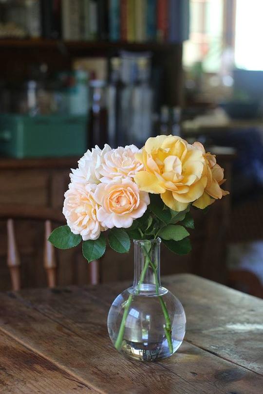 Chốn bình yên bên vườn hoa đẹp như thiên đường của bà lão 83 tuổi - Ảnh 14.