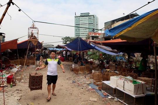 Những khu chợ chỉ bán một mặt hàng ở Việt Nam - Ảnh 14.