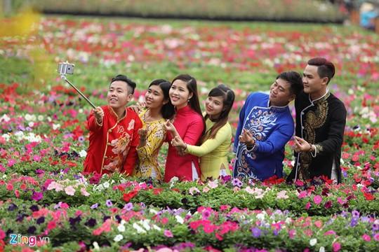 Ảnh đẹp hoa xuân trên các miền Tổ quốc
