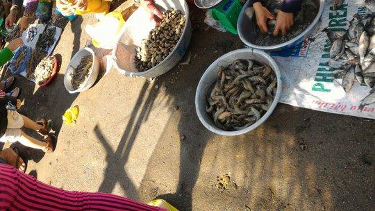Mớ tôm, mớ cá được ngư dân đem ra chợ bán