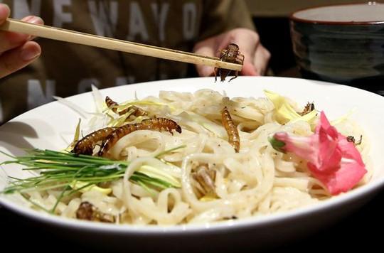 Một thực khách thưởng thức món mì côn trùng với sâu và dế chiên tại nhà hàng Nagi. Ảnh: Reuters.