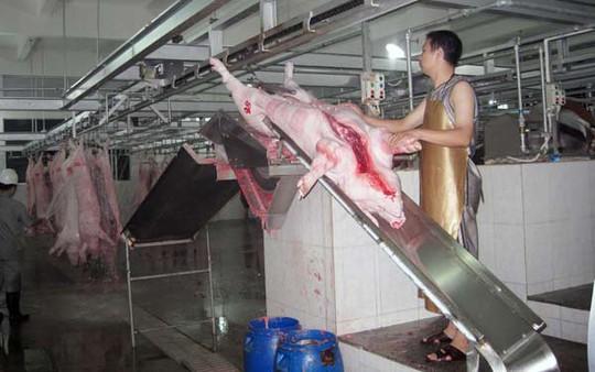 Hiện tại, cả nước cũng có lác đác một vài lò mổ công nghiệp, như của Vissan, D&P, nhưng các lò này đầu tư vì mục đích bán thịt tươi sống nên khu cấp đông thường làm rất nhỏ. Ảnh: TL