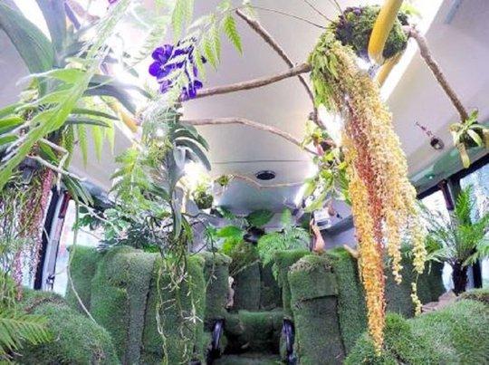Đài Bắc thử nghiệm xe buýt rừng xanh - Ảnh 3.