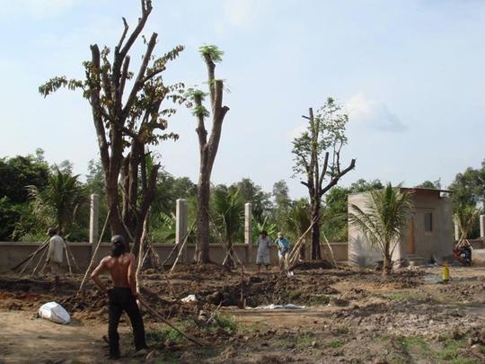 Vườn cây ăn trái 4 tỉ đồng như công viên của bà mẹ 2 con tại TP HCM - Ảnh 3.