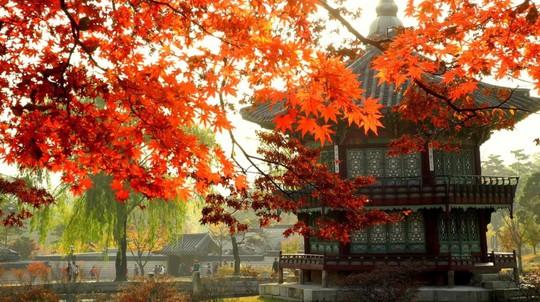 Những điểm du lịch châu Á lý tưởng bạn nên đi trong tháng 10 - Ảnh 3.