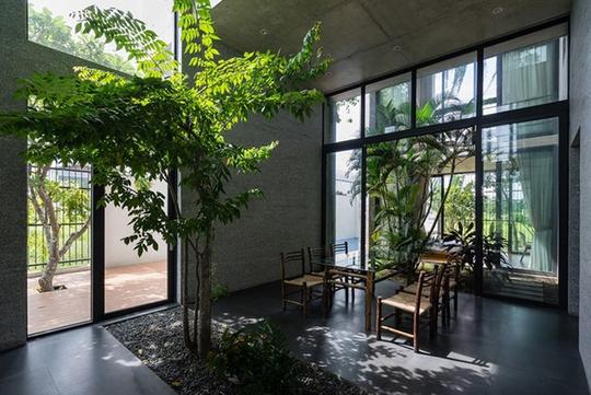 Xu hướng tạo vườn trong nhà trong thiết kế nhà ở - Ảnh 3.