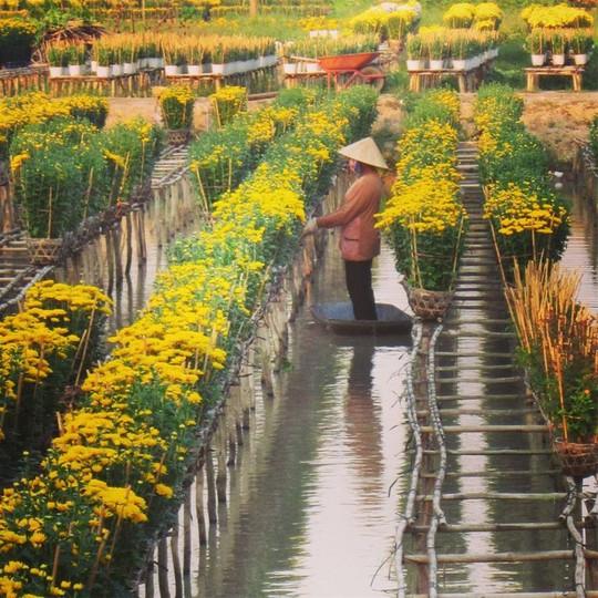 Làng hoa lớn nhất Nam bộ Sa Đéc tất bật vào mùa Tết - Ảnh 3.