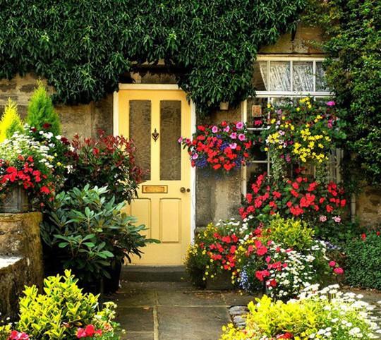 Muôn kiểu trang trí mặt tiền nhà với hoa cực hút mắt - Ảnh 3.