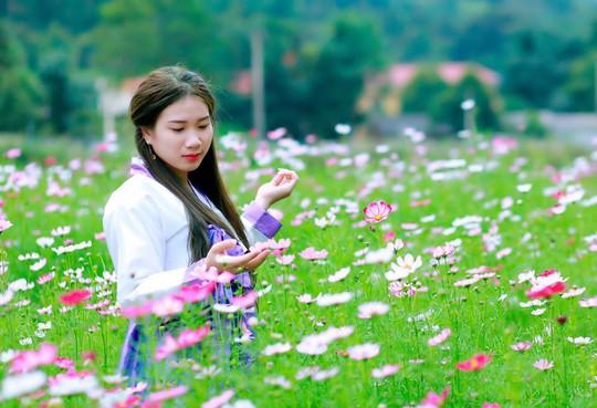 Ngẩn ngơ với thung lũng hoa ở cao nguyên Lào Cai - Ảnh 7.