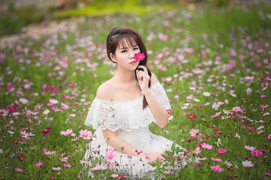 Ngẩn ngơ với thung lũng hoa ở cao nguyên Lào Cai - Ảnh 8.