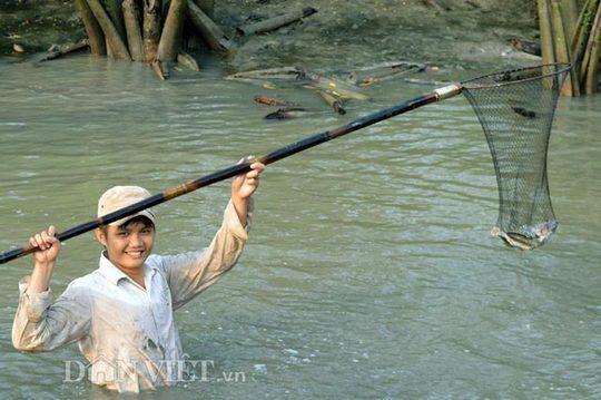 Tại những chỗ trũng nước còn khá sâu, rất khó để bắt được những con cá khỏe