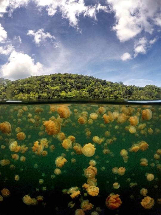 Những hồ nước kỳ lạ trên thế giới - Ảnh 4.