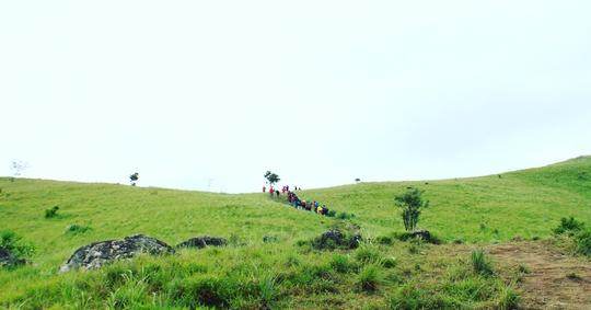 Đưa nhau đi trốn ở rừng Tà Năng- Phan Dũng - Ảnh 10.