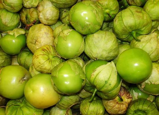 Tầm bóp: Ở Việt Nam là quả dại, ở Nhật bán 700.000 đồng/kg - Ảnh 4.