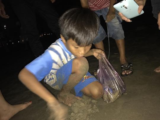 Vua nhí câu tôm tích trên bãi biển Vũng Tàu - Ảnh 4.