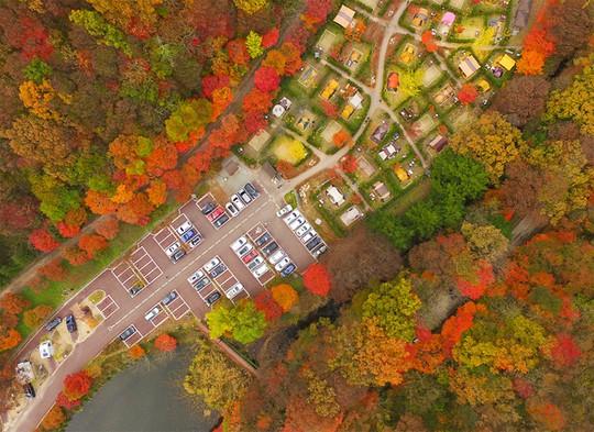 Những đường cây mùa thu đẹp nhất thế giới - Ảnh 4.
