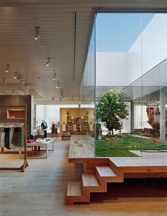 Xu hướng tạo vườn trong nhà trong thiết kế nhà ở - Ảnh 4.