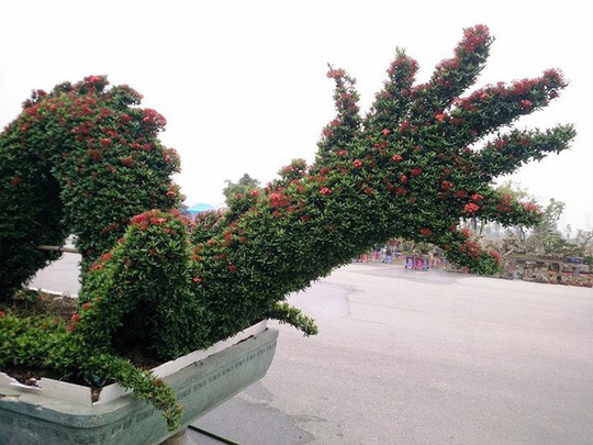 """Những linh vật """"khủng"""" tạo hình từ hàng trăm cây hoa mẫu đơn - Ảnh 4."""