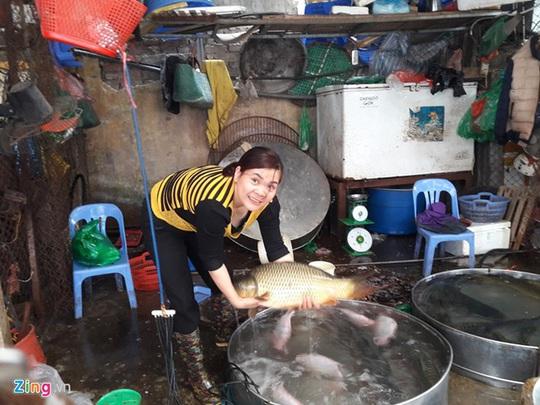 Cá chép sông loại to có giá tới 200.000 đồng/kg được mua, bán khá nhiều. Ảnh: Hiếu Công.