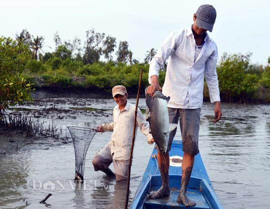 Niềm vui bắt được những con cá lớn