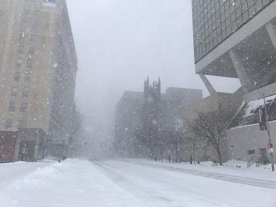 Tuyết rơi dày đặc ở TP Hartford. Ảnh: Twitter