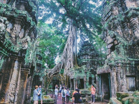 Ta Prohm - ngôi đền của những rễ cây kỳ dị - Ảnh 5.