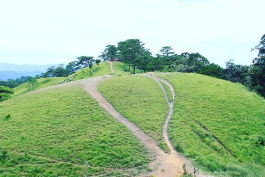 Đưa nhau đi trốn ở rừng Tà Năng- Phan Dũng - Ảnh 12.
