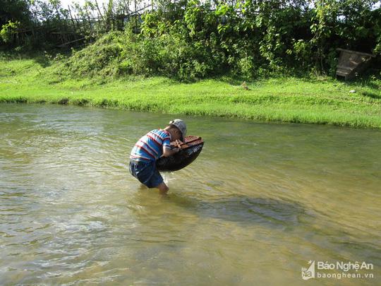 Chiêu độc săn cá suối của trẻ em vùng cao Nghệ An - Ảnh 5.