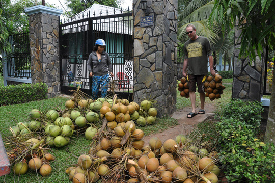 Vườn cây ăn trái 4 tỉ đồng như công viên của bà mẹ 2 con tại TP HCM - Ảnh 5.