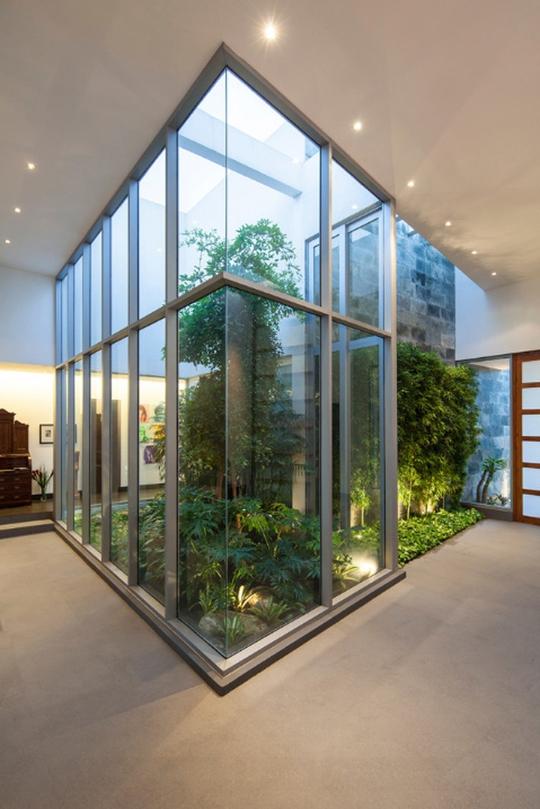 Xu hướng tạo vườn trong nhà trong thiết kế nhà ở - Ảnh 5.