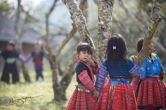 Đến Mộc Châu khám phá Tết của người Mông