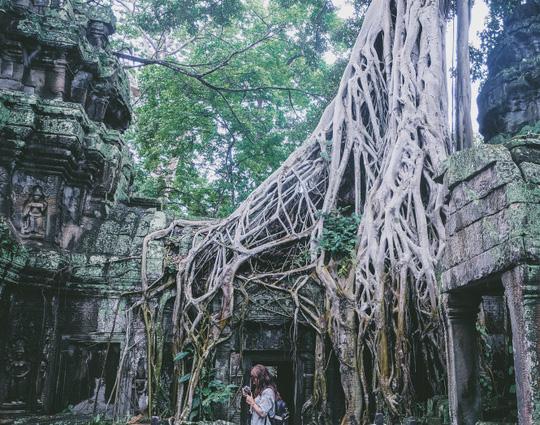 Ta Prohm - ngôi đền của những rễ cây kỳ dị - Ảnh 6.